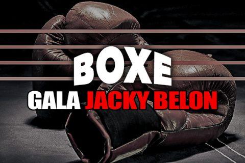 Section-Boxe-Gala-1b