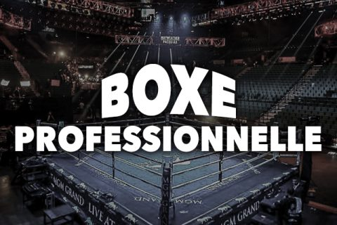 Section-Boxe-Pro-1b